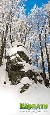 Два обличчя Анталовецької Поляни