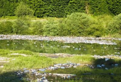 Екологія Карпат