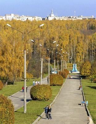 Місто у затінку дерев
